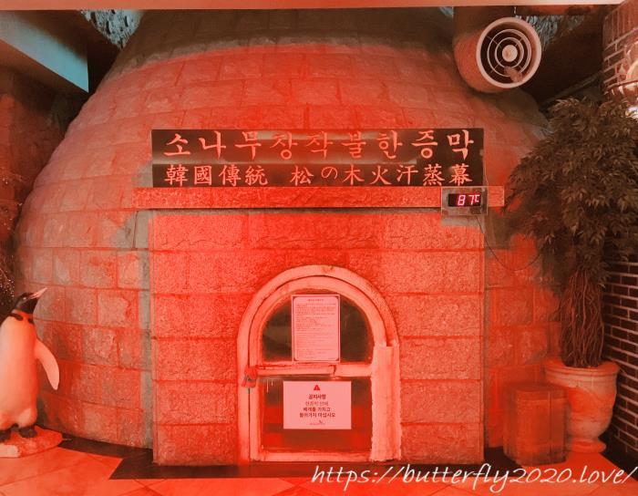 ソウル龍山駅のチムジルバン「ドラゴンヒルスパ(Dragon Hill Spa)」でサウナ&汗蒸幕体験談!