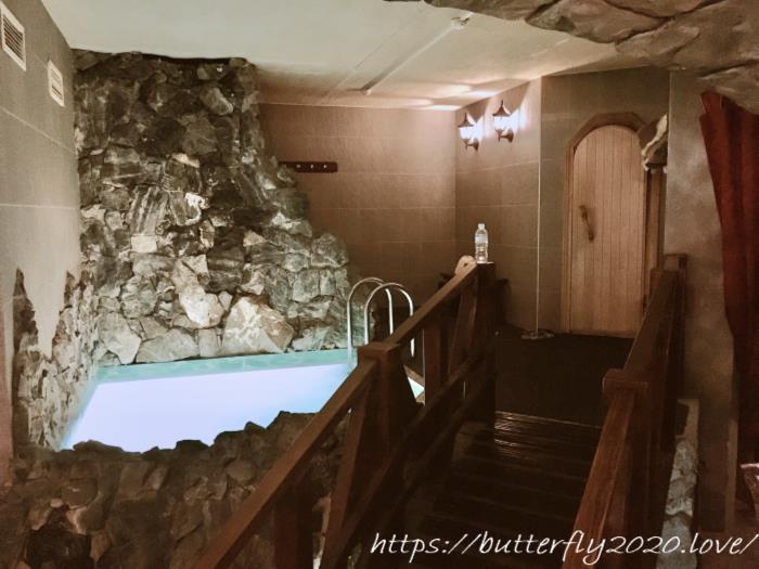 ウラジオストクのギャバンホテル(HOTEL GABAN Hotel & Wellness Centre)でバーニャならぬサウナの貸切体験談